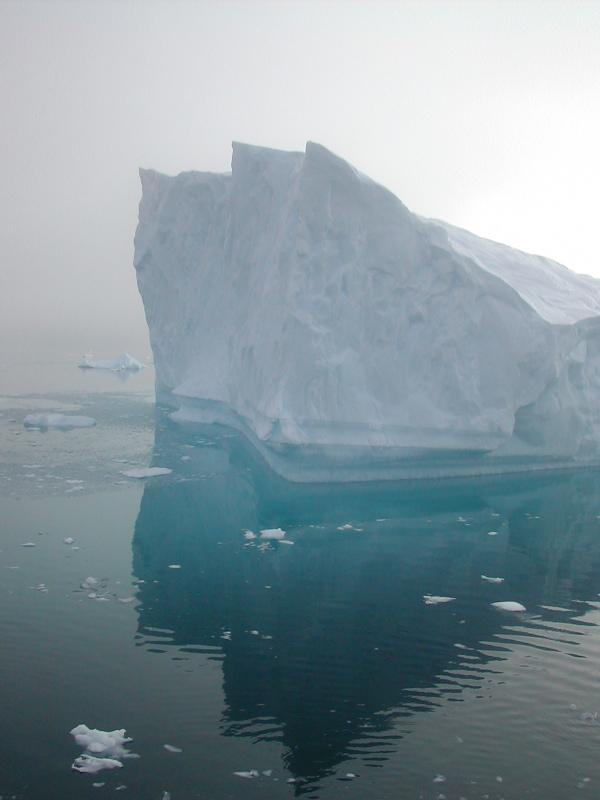 iceberg_paradise.jpg