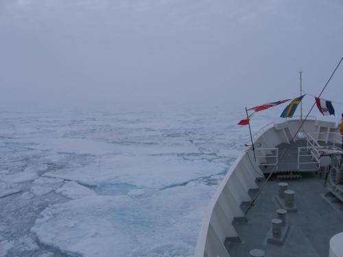 polar_ice_cap